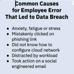 Causes of Negligent Data Breaches